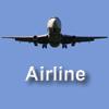 Compania aeriană joc