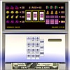 Casino Cash Machine joc