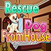 Câine de salvare la Casa joc