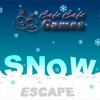 Snow Escape joc